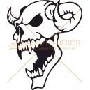 Lebky a kosti (1)